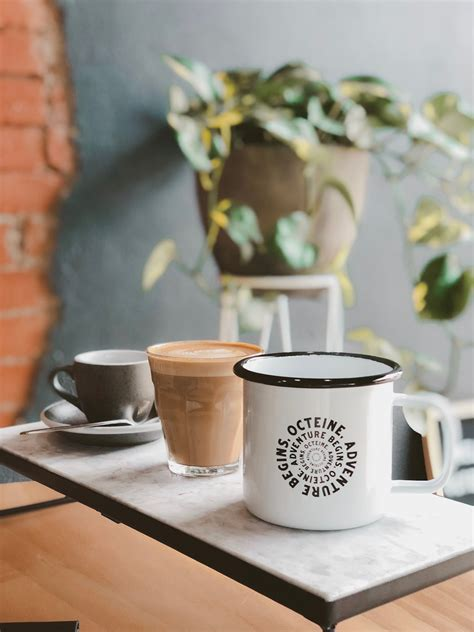 Octeine Coffee has just opened in the Seppeltsfield
